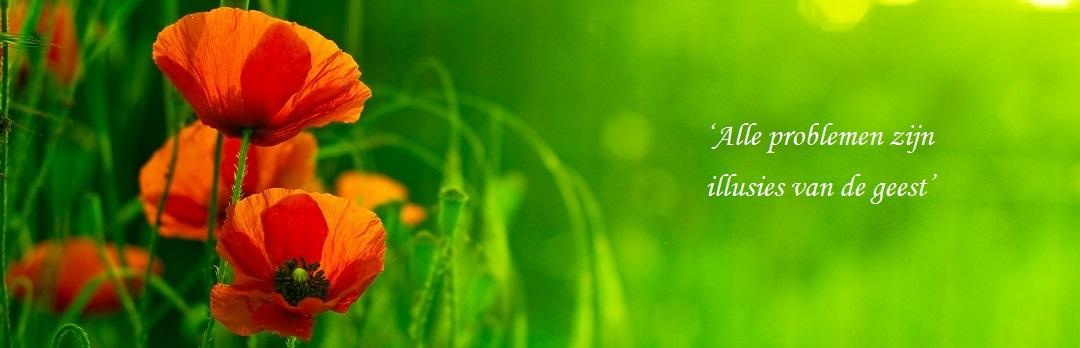 rode klaproos in het gras met quote: alle problemen zijn illusies van de geest